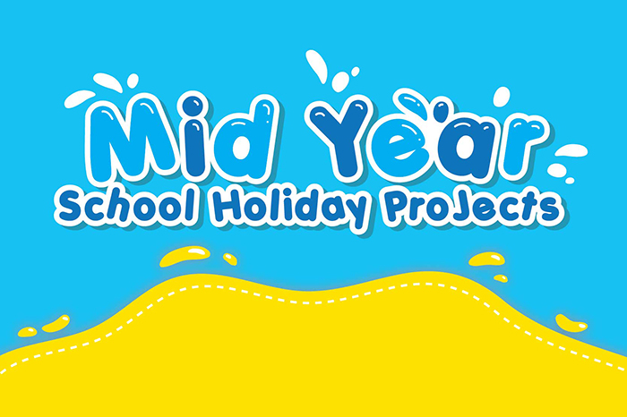 2020 Mid Year Holiday Projects